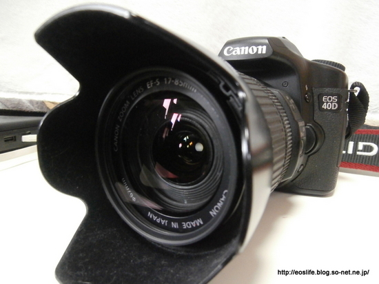 1-P7050125.JPG